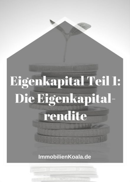 Eigenkapital Teil 1: Die Eigenkapitalrendite